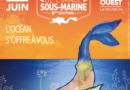 Le Festival de l'Image sous-marine du 7 au 15 juin